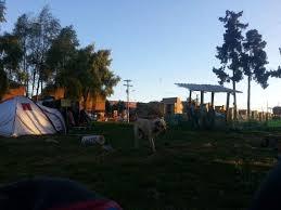 """Acción comunitaria en defensa del humedal """"La Conejera"""""""