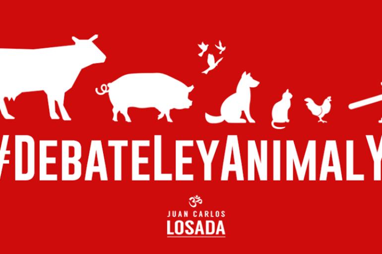 Este martes se debate proyecto de Ley de protección animal
