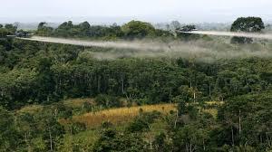 30 años de lucha en contra del Glifosato en Colombia