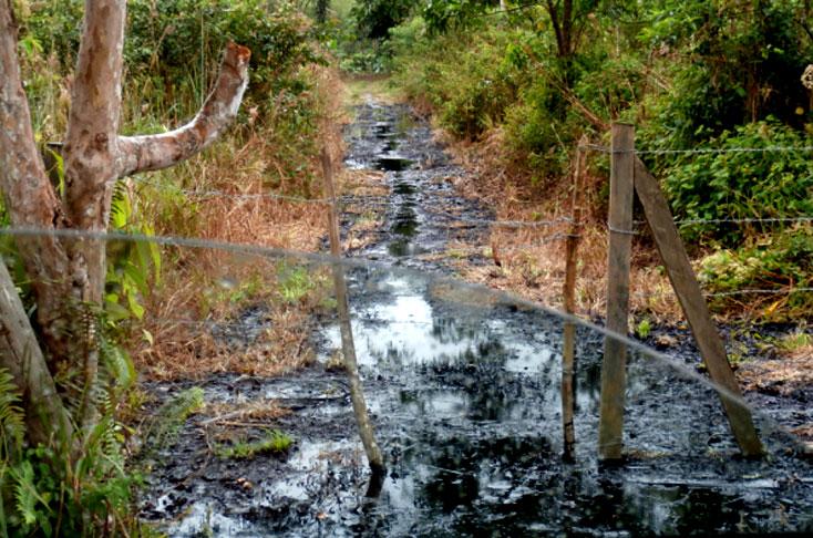 Comunidad indígena en Putumayo dijo NO a actividad petrolera de Amerisur
