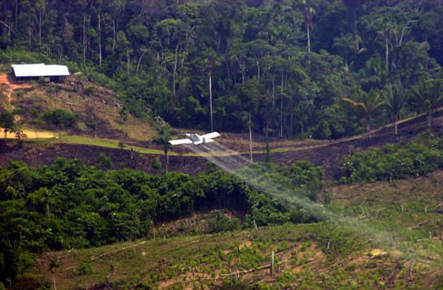 Continúan fumigaciones con glifosato sobre comunidades del Río Naya
