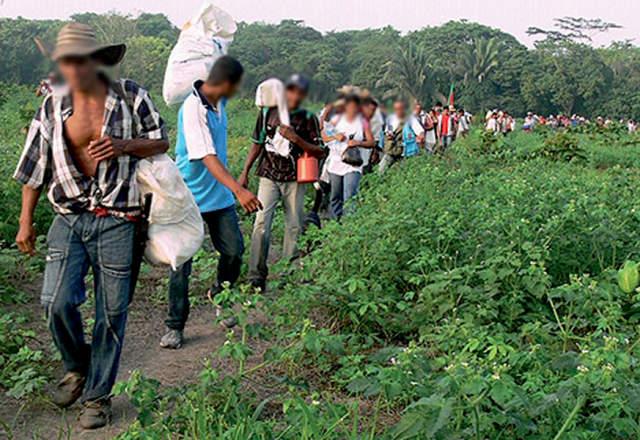 Corte Constitucional ordena proteger a campesinos de Bellacruz, pero continúa presencia paramilitar