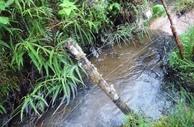 Petroleras contaminan 2 litros de agua por segundo en Putumayo