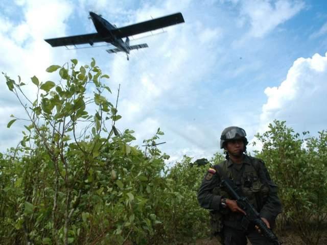 Por fumigaciones con glifosato 800 familias de la Perla Amazónica tendrían que desplazarse