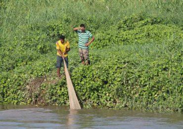 Se están acabando los peces en el río Magdalena
