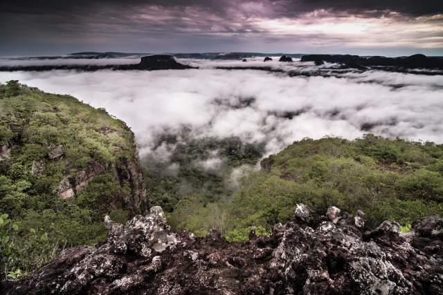 Parque natural Sierra de Chiribiquete. Foto: Colombia Magia Salvaje.