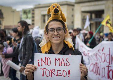 Que la Corte, corte la tortura en Colombia: Animalistas