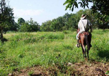 Hay 177 amenazas contra líderes reclamantes de tierras en Colombia