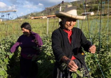 Solo el 24% de las mujeres rurales pueden tomar decisiones sobre sus tierras