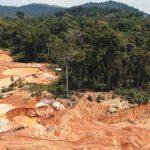 Indígenas demandan a cadena de supermercados por deforestación en Colombia
