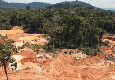 Deforestación sigue acabando con la Amazonia colombiana