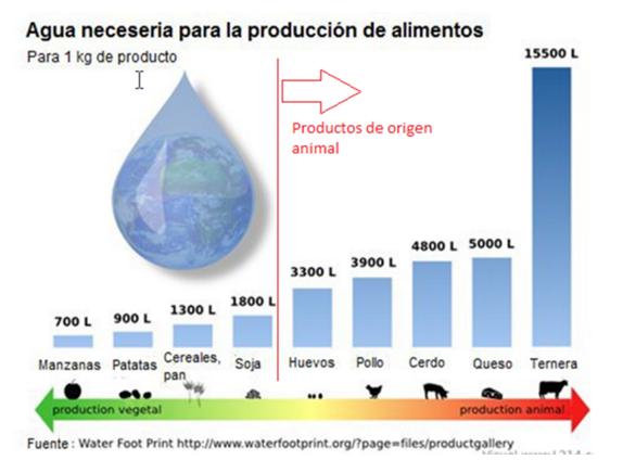 cantidad de agua