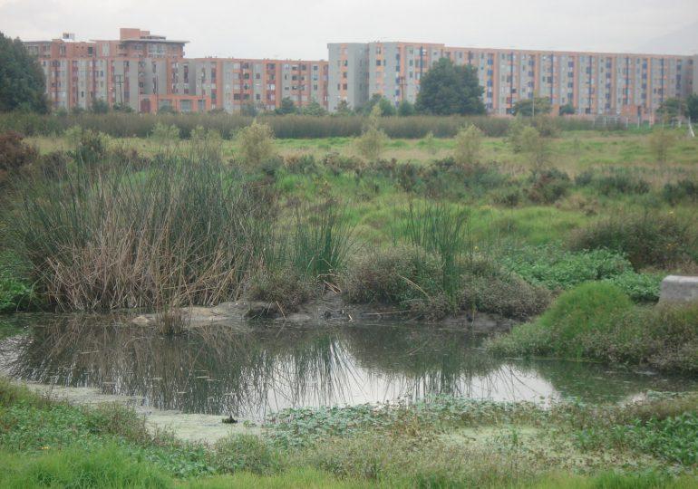 Falta de apropiación ciudadana es el mayor riesgo para los humedales