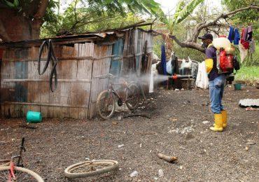 Zika no sería la causa de la microcefalia sino productos químicos de Monsanto