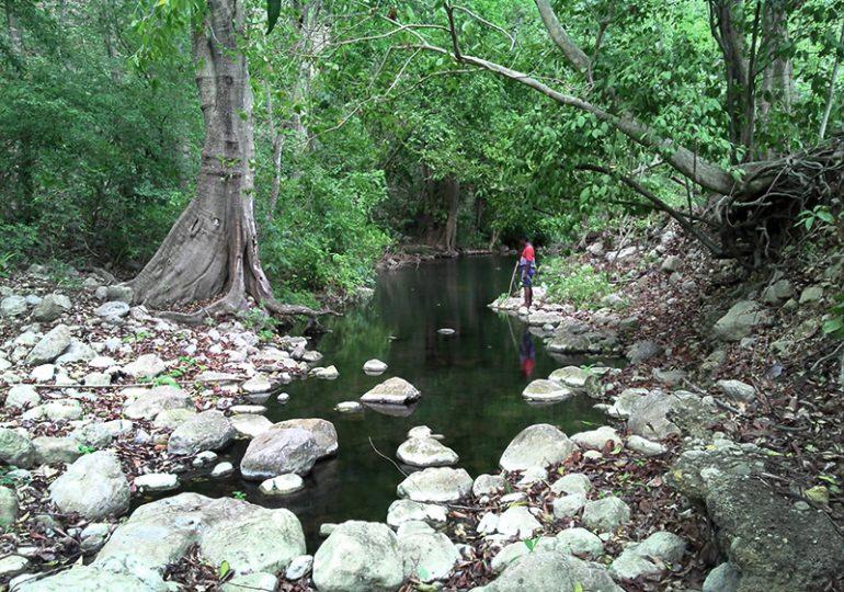 El Cerrejón buscaría desalojar a 27 familias Wayúu para desviar el arroyo Bruno