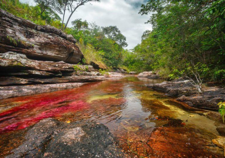 Millonaria demanda contra el Estado por impedir explotación petrolera en Caño Cristales