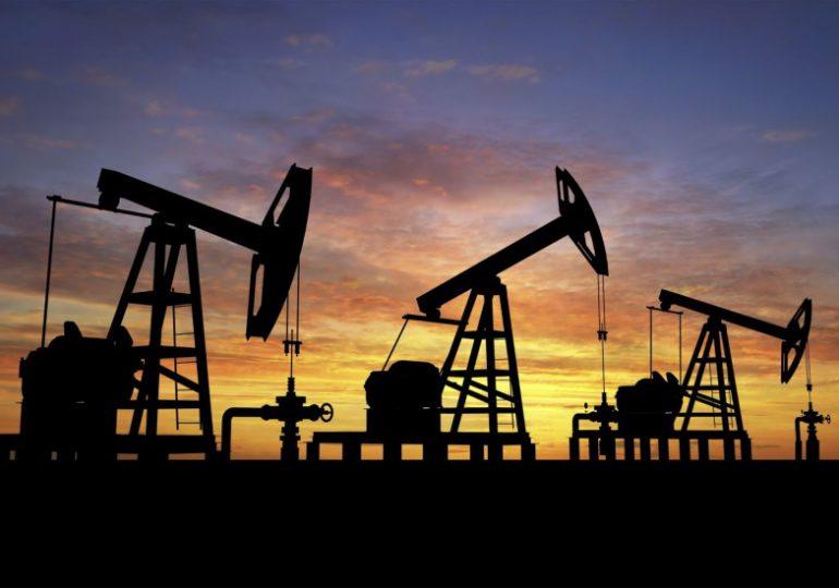43 bloques petroleros en Caquetá amenazan la Amazonía colombiana