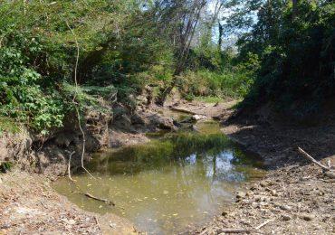 Carbones del Cerrejón incumple sentencia que protege a comunidades y al Arroyo Bruno