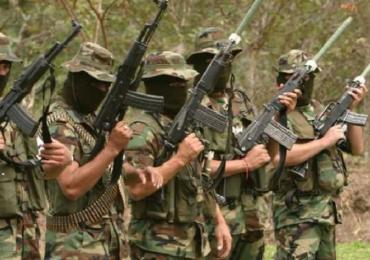 Paramilitares usurpan 13 mil hectáreas de tierras en Vichada