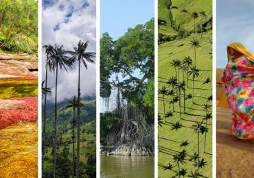 Los 5 ecosistemas emblemáticos turísticos de Colombia más amenazados