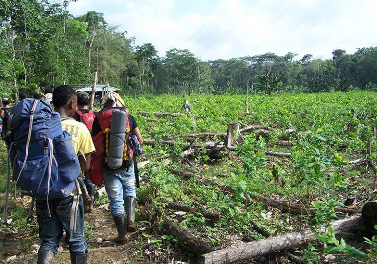 Ley de víctimas solo ha restituido 200 mil de 6 millones de hectáreas despojadas en Colombia