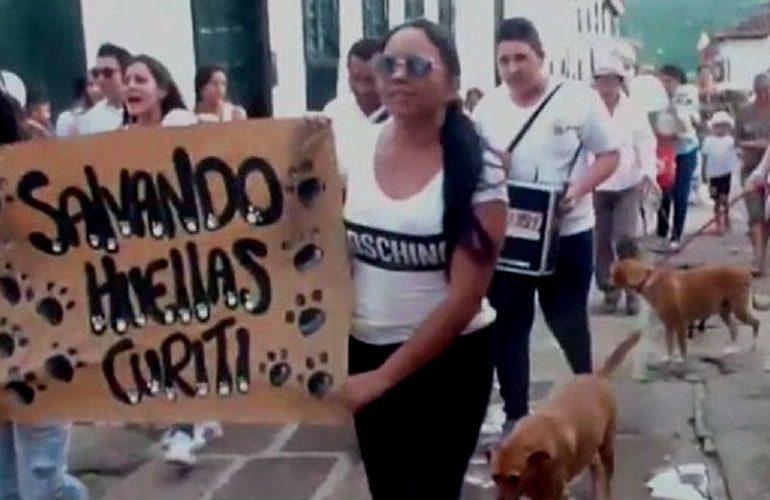 70 animales envenenados en un mes alarman a comunidades en Curití, Santander