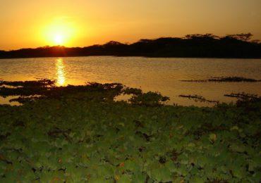 Humedal de La Guajira en riesgo por exploración sísmica