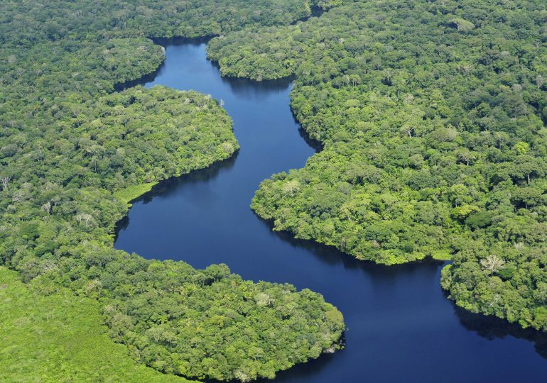 El 17% de la selva amazónica ha sido destruida