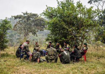 Entregan alimentos descompuestos a guerrilleros de las FARC en zonas de preagrupamiento