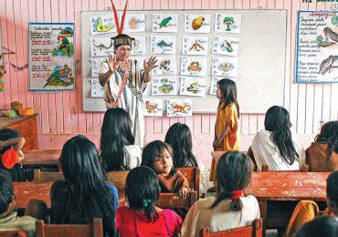 El 15% de los indígenas latinoamericanos no acceden a la secundaria