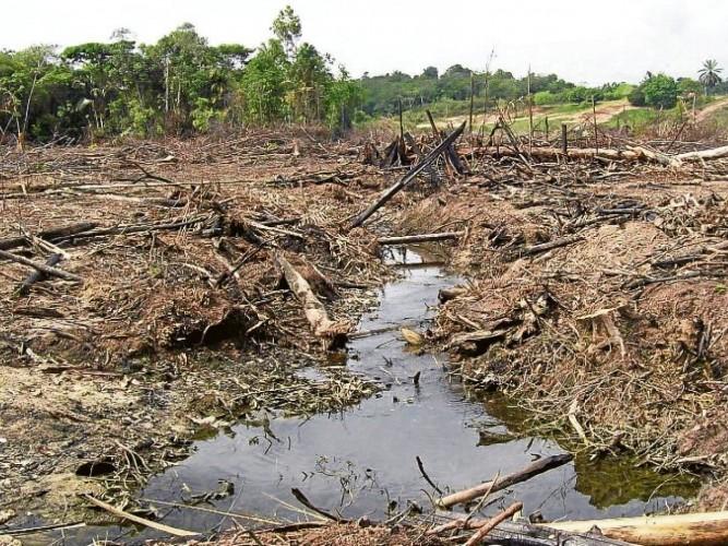 40% del territorio colombiano está erosionado: IGAC