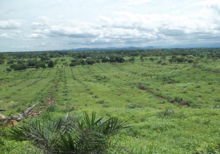 20 Empresas deberán devolver 53.821 hectáreas de tierras despojadas