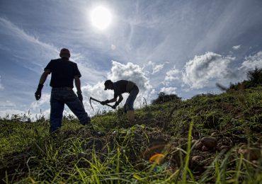 Sin voto de Colombia ONU adopta declaración por Derechos de los campesinos