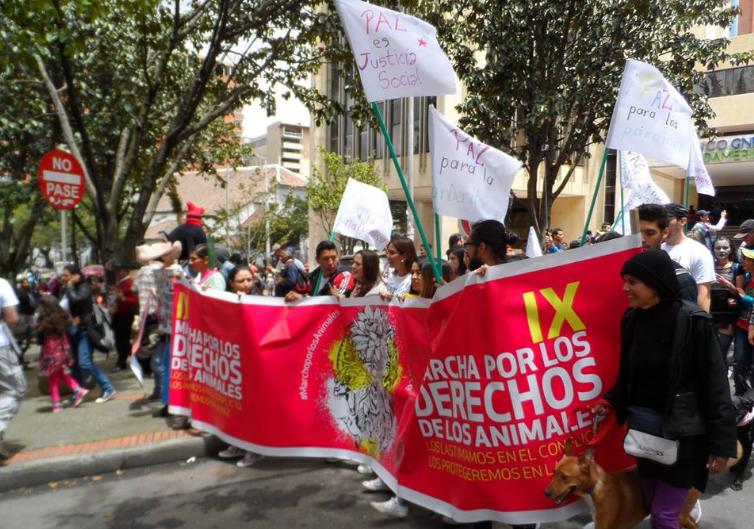 Así está Colombia en materia de protección animal