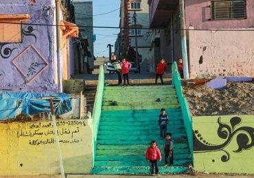 Fotografía: refugio de vida en medio de la devastación en la Franja de Gaza