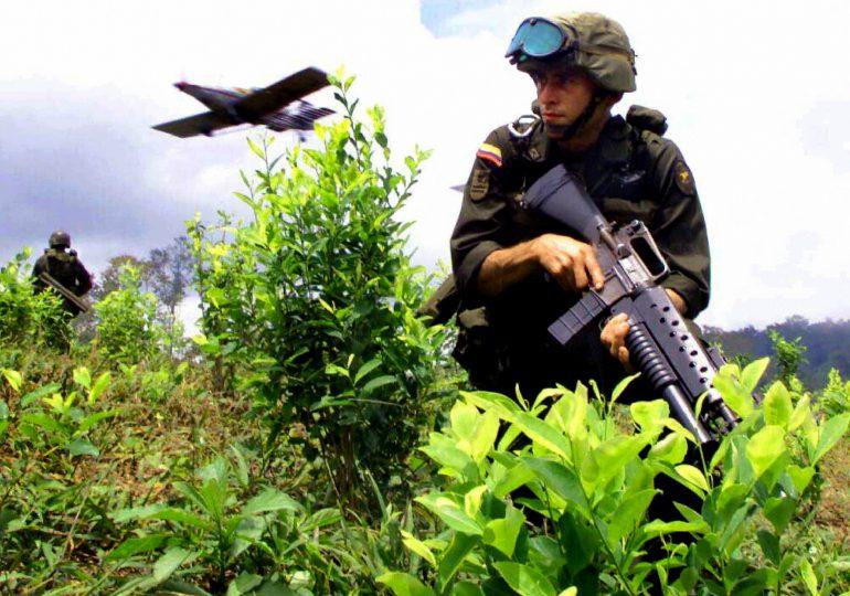 Organizaciones piden que no se militarice lucha contra cultivos de uso ilícito