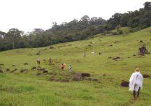Informe «Tierra y despojo en los Llanos» será entregado a la Comisión de la Verdad