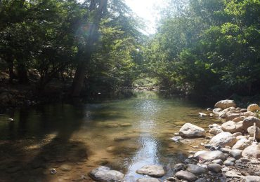 Costos ambientales de acción de Cerrejón en la Guajira siguen en aumento