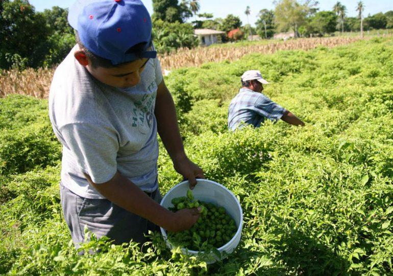 Zonas de Reserva Campesina listas para la implementación de Acuerdos