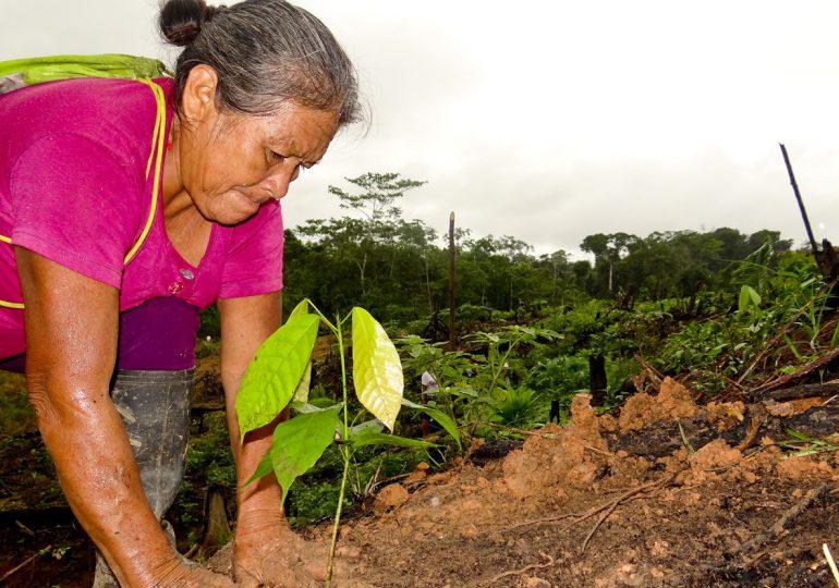 Mujeres cocaleras entregan 14 puntos mínimos para sustitución de cultivos