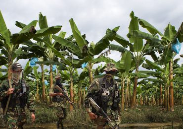 La macabra alianza entre paramilitares y empresas Bananeras