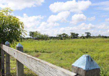 Terrenos de Puerto Pisisí en Turbo pasan al registro nacional de tierras despojadas
