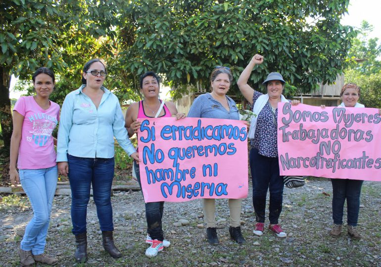 Reducción de cultivos de uso ilícito es un mérito de las comunidades