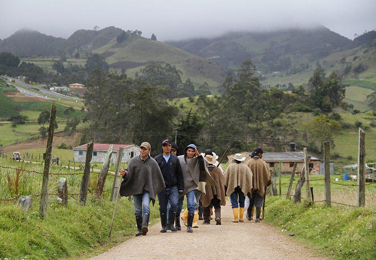 Más micos en la Fast Track: el caso del Sistema Nacional de Innovación Agropecuaria