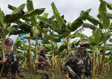 La relación entre Chiquita Brands, Álvaro Uribe y las Convivir