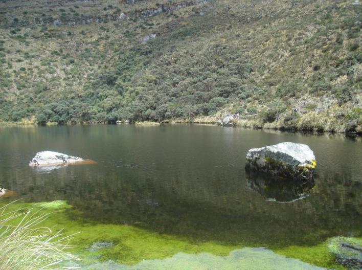 Aprueban consulta popular sobre actividades petroleras en Pasca, Cundinamarca