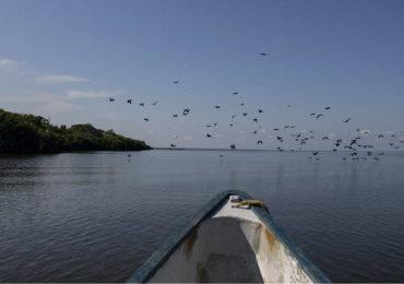 Convención Ramsar confirma crisis ecológica de la Ciénaga Grande Santa Marta