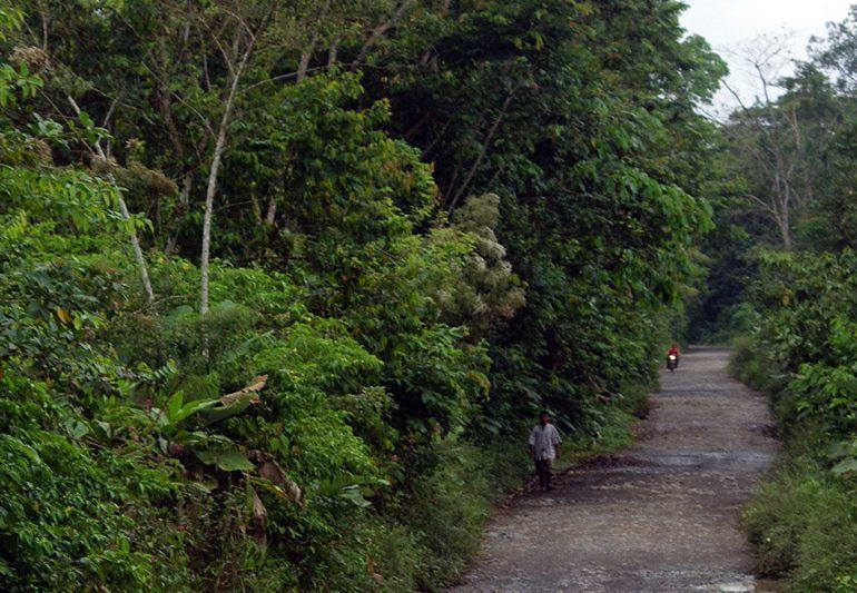 Paramilitares imponen controles a transporte público en Chocó