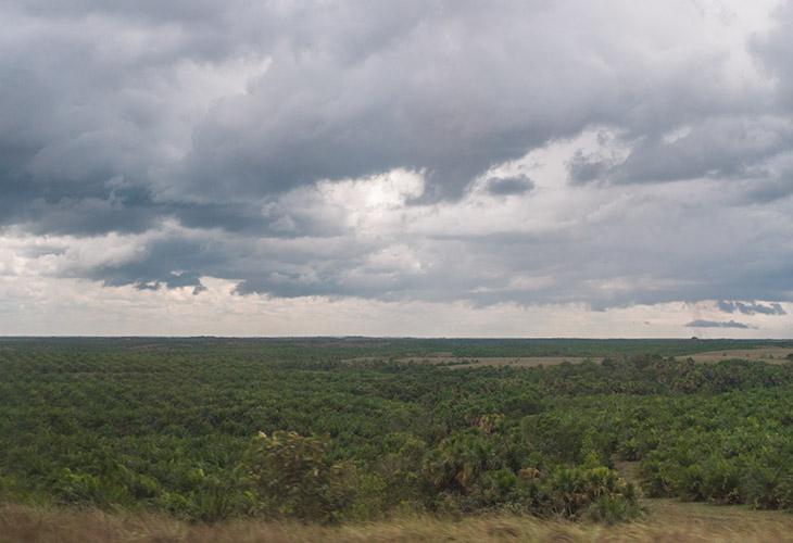 Las tierras de Mapiripán, uno de los asuntos centrales para las víctimas