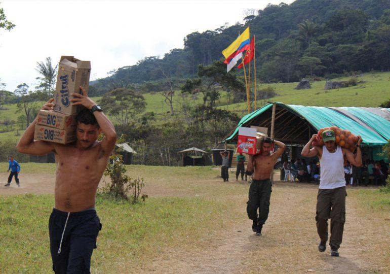 Listo el censo socioeconómico de los integrantes de las FARC